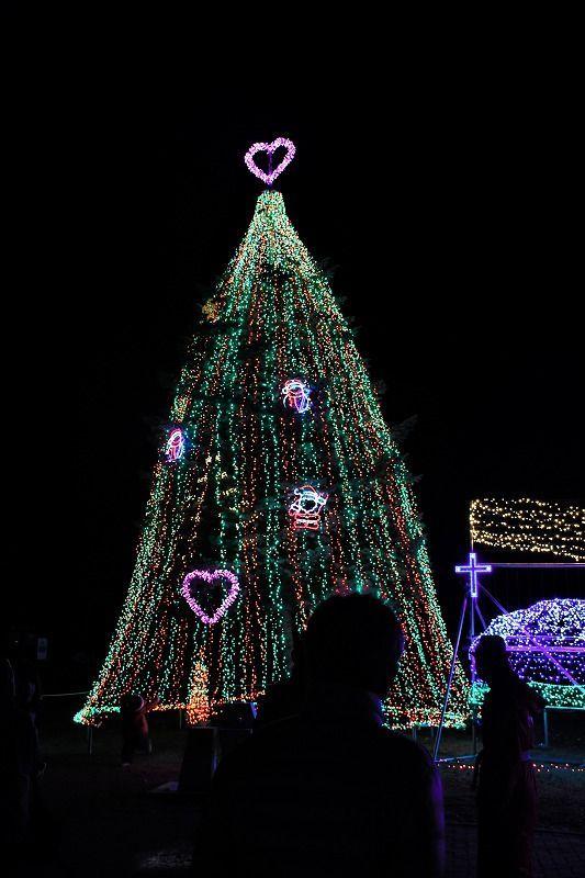 Koiwai Winter Illumination (Iwate Prefecture)