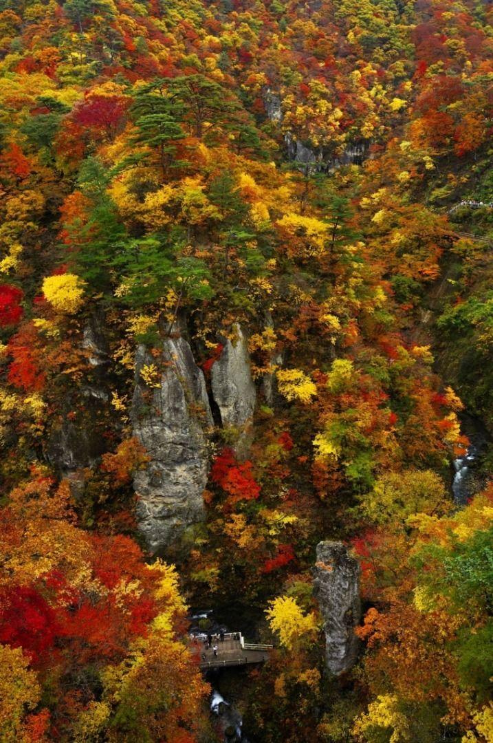 Naruko Kyo (Miyagi Prefecture) Autumn leaves