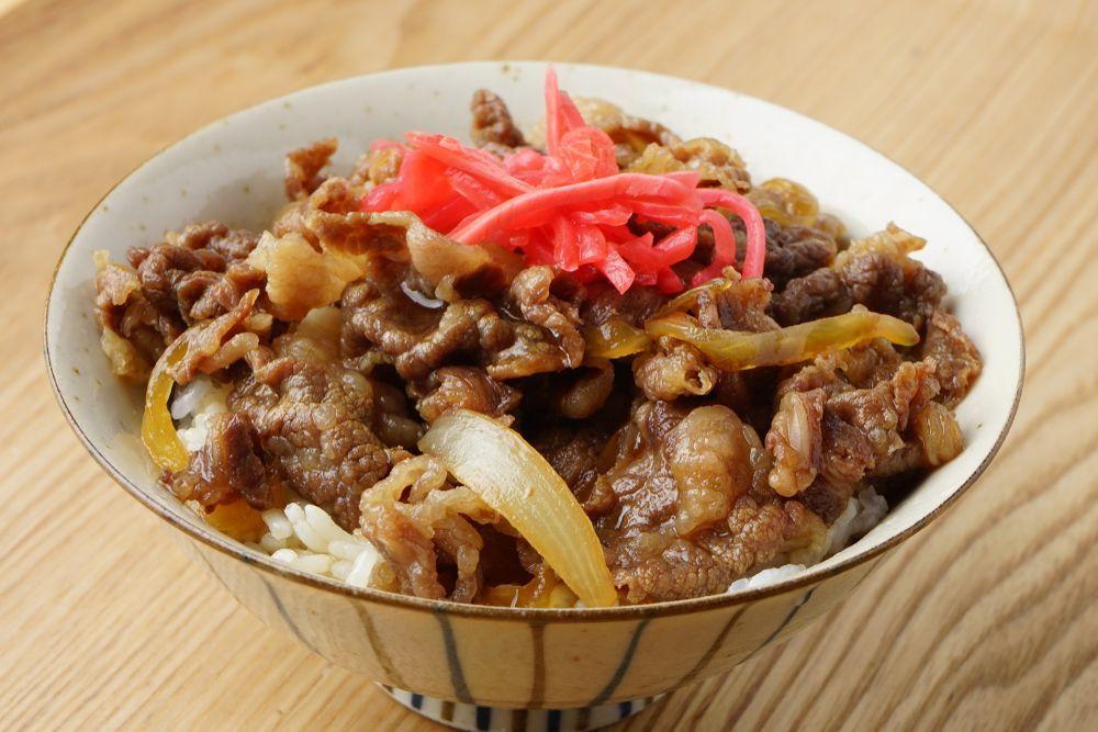 Japan Gyudon rice bowl