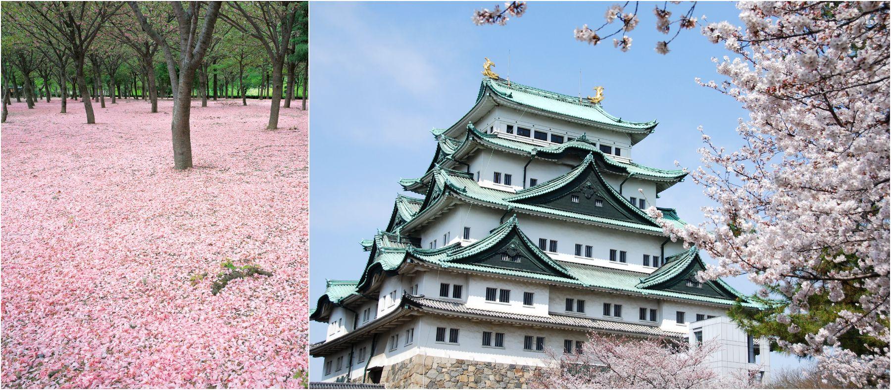 Osaka Castle ruin Japan