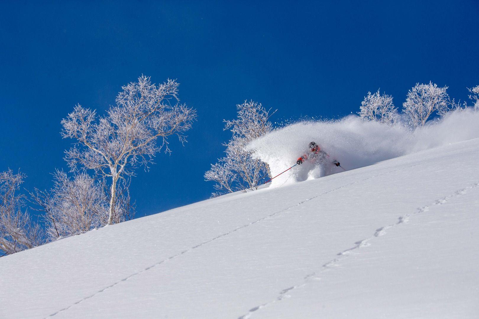 Winter Snow Ryuoo Ski Park (Nagano)