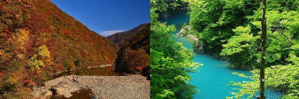 Dakigaeri Keikoku (Akita Prefecture) Autumn