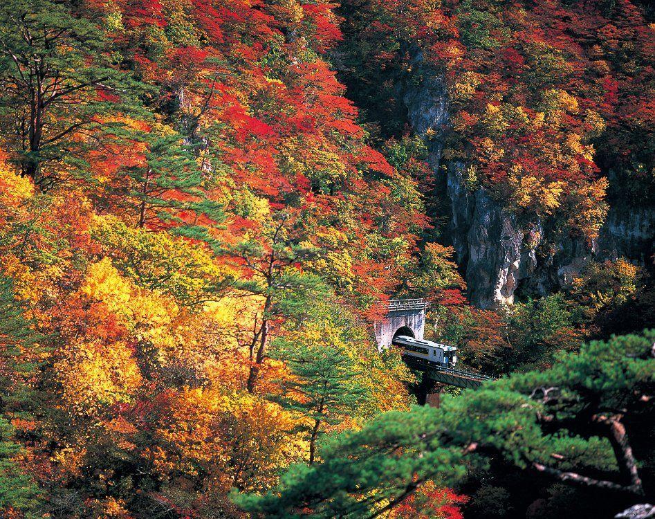Tohoku Autumn Leaves in Japan