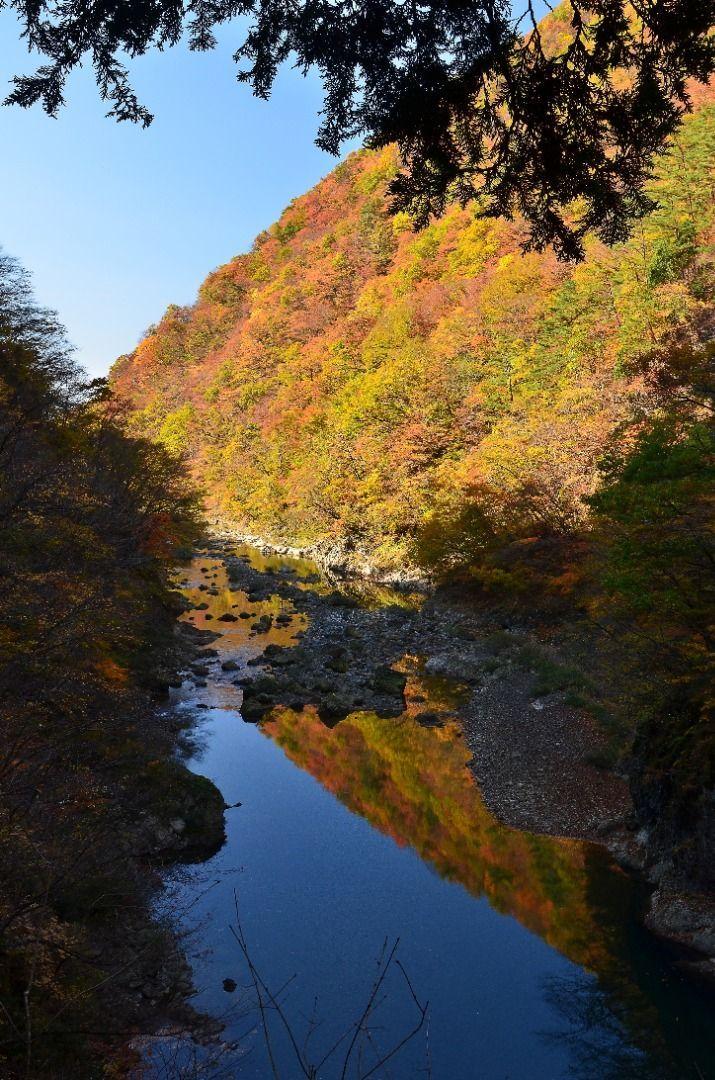Dakigaeri Keikoku (Akita Prefecture) Japan Autumn