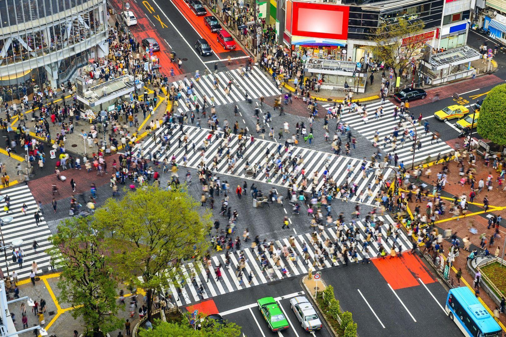 JR Shibuya station scramble crossing