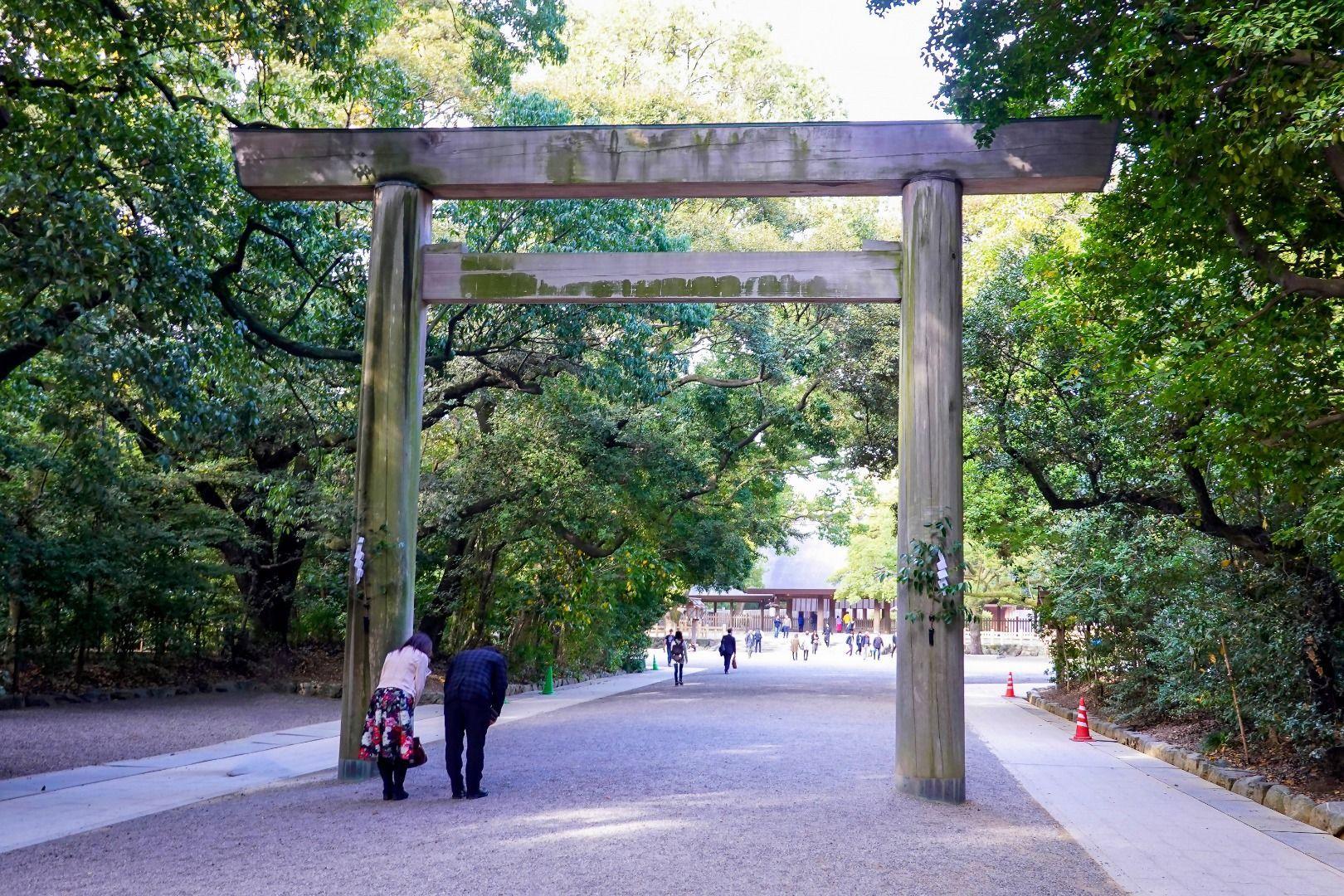 New Year Hatsumode Torii