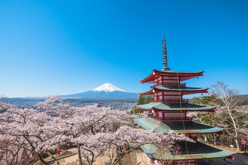 Crimson five-story pagodas and Mt. Fuji - the beautiful harmony of traditional temples and cherry blossoms Arakurayama Sengen Park (Yamanashi)