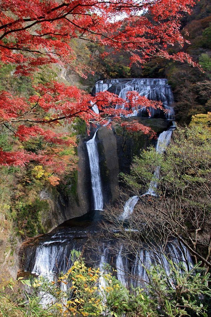 The Perfect Season to see Japan's 3 Great Ice Falls!  Fukuroda Falls (Ibaraki Prefecture)