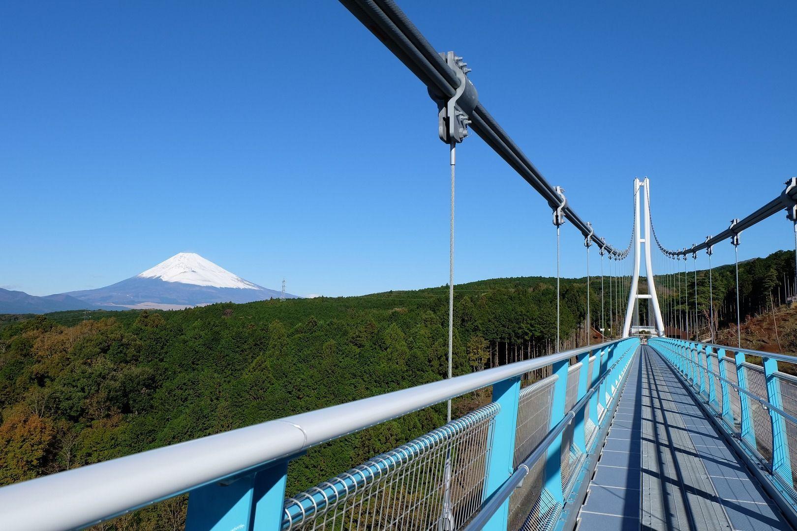 Enjoy celebrity-level views of Mt. Fuji from Shizuoka!Mishima Sky Walk