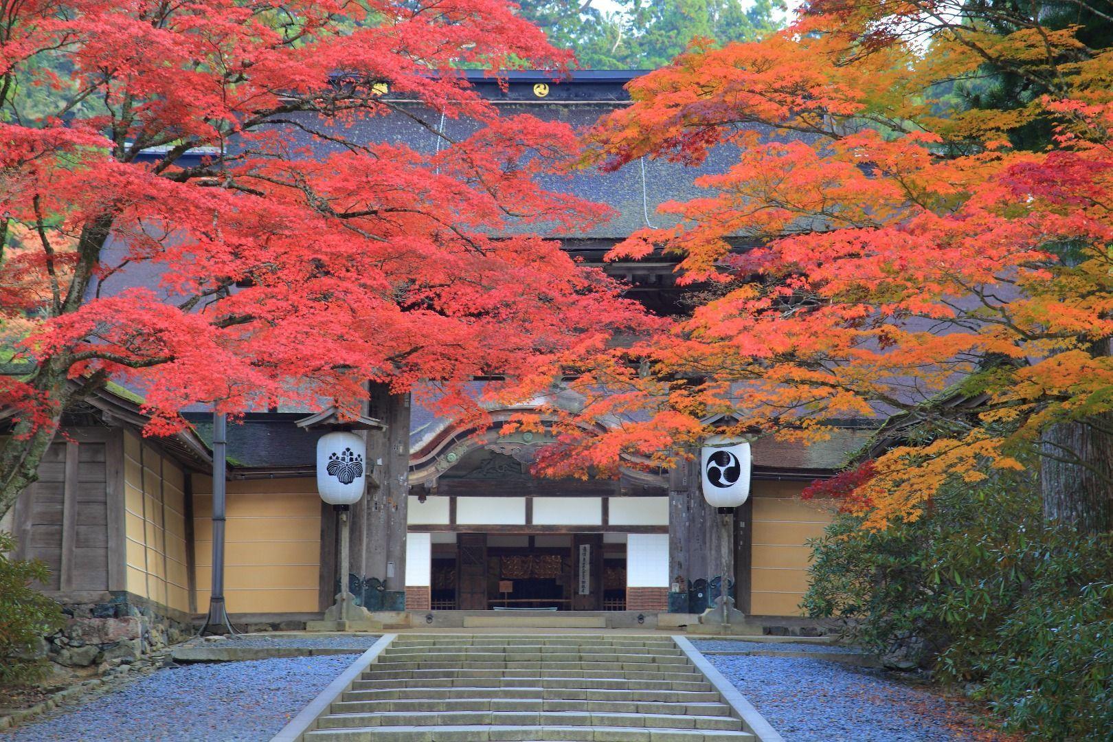 Mount Koya (Wakayama Prefecture)
